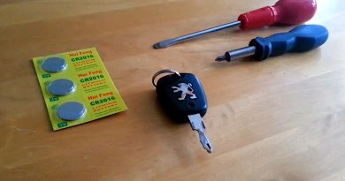 Peugeot key, two screwdrivers and a pack of batteries